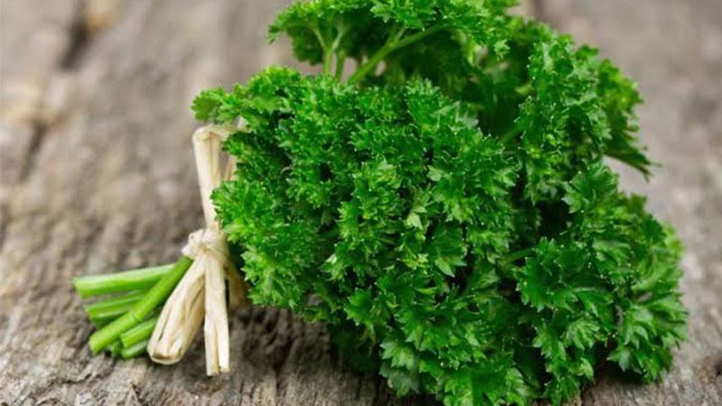 Daun-parsley